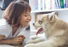 chien bon pour la santé